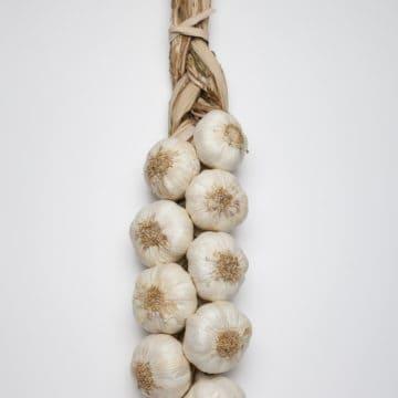 Small Garlic Braid